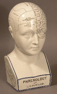 Image of Classic example of L.N.Fowler phrenology head.